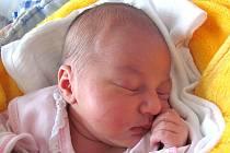 Karolína Hulíková se narodila 23. ledna Janě Markesové a Václavu Hulíkovi z Jarošova nad Nežárkou. Vážila 3470 gramů a měřila 51 centimetrů.
