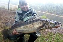 CANDÁT. Délka 80 centimetrů, nástraha mrtvá rybka, uloven na Staňkově, rybář Adam Oktábec.