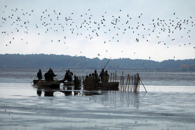 Výlov rybníka Rožmberk 2020.