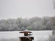 Sněžení zasáhlo 28. dubna také Suchdol nad Lužnicí.