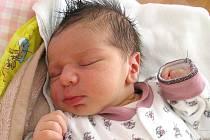Adam Šindelář se narodil 23. srpna v 8 hodin a 55 minut Lence a Richardovi Šindelářovým z Nové Včelnice. Vážil 3740 gramů a měřil 52 centimetrů.