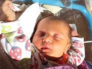 Amálie Medková se narodila 11. května Kateřině Medkové a Michaelu Rusnákovi z J. Hradce. Měřila 49 centimetrů a vážila 3170 gramů.