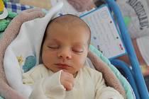 Kryštof Fejtek se narodil 4. října Mileně Koubové a Miroslavu Fejtkovi z Majdaleny. Měřil 48 centimetrů a vážil 3000 gramů.