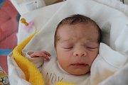 Eliška Heřmánková se narodila 15. března Andree Sobotové a Marku Heřmánkovi z Kamenice nad Lipou. Měřila 48 cm a vážila 2930 g.