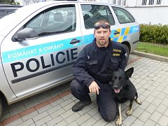 Policejní fena německého ovčáka Waomi vypátrala hledaného muže v močálu. Na snímku je se svým psovodem Janem Molem.