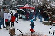 Vánoce v zoo na Hrádečku.