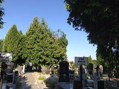 Třeboňský hřbitov.