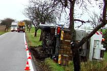 """JEŘÁB V PŘÍKOPU a za ním dva kamiony, které se pokoušejí na silnici ze Slavonic do Dačic  vyhnout. V létě se zde stala tragická nehoda, kdy kláďák """"smetl"""" do příkopu motocyklistu. Ten na místě zemřel. Občané a především řidiči se bojí."""