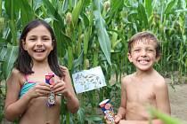 Léto v kukuřici startuje už 30. června.