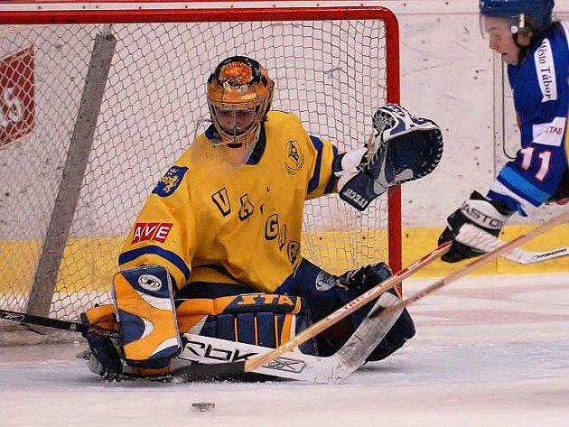 TALENT. Junior Lukáš Melišík byl velkou oporou hokejistů jindřichohradeckého Vajgaru v druholigovém utkání v Chrudimi, ale ani jeho výborný výkon nakonec na body nestačil. Jihočeši na ledě lídra prohráli 2:4 a zůstali na posledním místě tabulky.