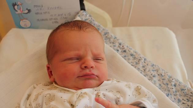 Jiří Roubal, Jindřichův Hradec.Narodil se 11. listopadu Evě a Jiřímu Roubalovým, vážil 3700 gramů a měřil 50 centimetrů.