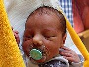 Štěpán Plucar se narodil 18. července Dagmar Balgové a Petru Plucarovi z Jindřichova Hradce. Měřil 49 centimetrů a vážil 2940 gramů.