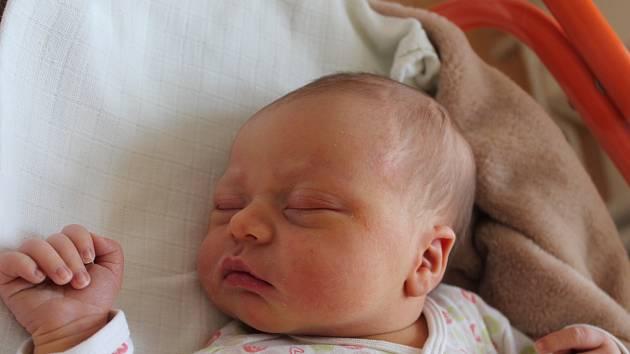 Tomáš Prodělal, Slavonice.Narodil se 12. října Marcele a Kamilovi Prodělalovým, vážil 3980 gramů a měřil 53 centimetrů.