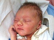 Maxmilián Hájek se narodil 19. června Markétě Plášilové a Lukáši Hájkovi z Jindřichova Hradce. Měřil 49 centimetrů a vážil 3170 gramů.