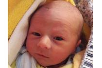 Miroslav Zikmund se narodil 1. listopadu Lence a Miroslavu Zikmundovým z Nové Včelnice. Měřil 46 centimetrů a vážil 2340 gramů.