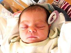 Šarlota Polláková se narodila 6. července Michaele Pollákové a Jiřímu Brejchovi z J. Hradce. Vážila 2730 gramů a měřila 46 centimetrů.