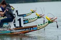 Hradecký rybník Vajgar se chystá na závod O putovní pohár předsedy spolku Vajgarská saň.