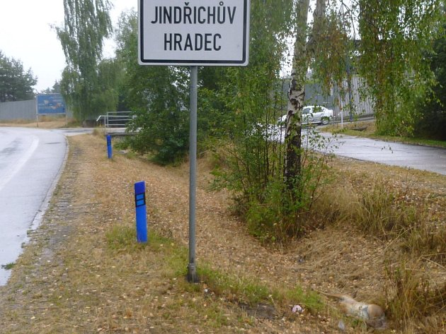 Čtyři dny ležela mrtvá sražená srna poblíž čerpací stanice ÖMV a notně zapáchala.