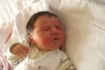 Viktorie Poslová z Třeboně se narodila 25. února 2014 Kateřině Souralové a Petru Poslovi. Vážila 3550 gramů a měřila 50 centimetrů.