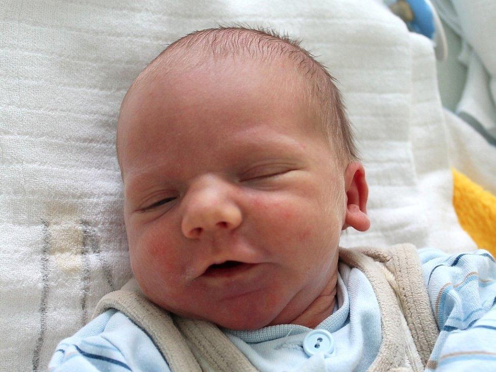 David Fabriger se narodil 28. dubna Šárce Valešové a Michalu Fabrigerovi ze Slavonic. Měřil 49 centimetrů a vážil 2820 gramů.