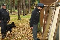 Policisté na Jindřichohradecku kontrolují chatové oblasti.