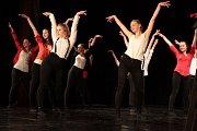 Sál Střelnice patřil v pátek podvečer žákům tanečního oboru jindřichohradecké Základní umělecké školy.