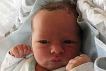 Martin Havlát se narodil 19. dubna Janě Horálkové a Martinu Havlátovi z Rancířova. Měřil 51 centimetrů a vážil 3990 gramů.