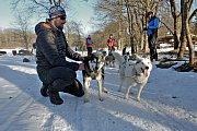Po sedmi letech se dočkali  mašéři a jejich psi sněhu. Závod s patnáctiletou tradicí měl smůlu na počasí. Letos se karta obrátila.