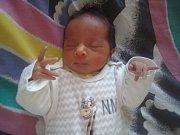 Sofie Tomisová se narodila 2. září Nikole Tomisové a Stanislavu Ferkovi. Měřila 45 cm a vážila 2450 gramů. Přivítali ji sourozenci Vaneska a Taylor.