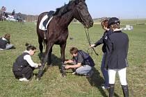Jezdci skládali zkoušky na licence