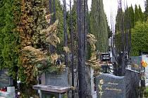 Požár na hřbitově v Jindřichově Hradci.