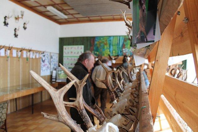 Výstava trofejí zveře ulovené na Jindřichohradecku. Ilustrační foto.