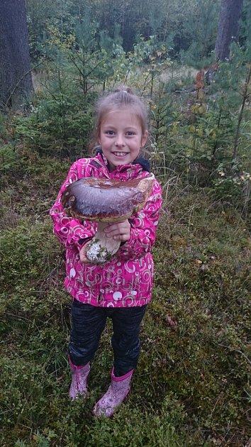 Houbařka Adélka měla velké houbařské štěstí. Našla u Jarošova nad Nežárkou velký hřib.