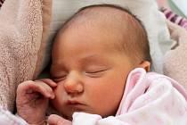 Sára Svitáková se narodila 12. prosince Monice a Michalovi Svitákovým z Jindřichova Hradce. Měřila 47 centimetrů a vážila 3140 gramů.