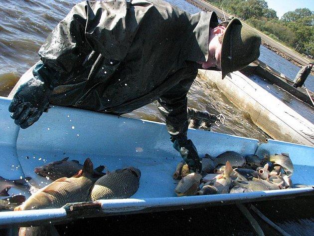 Rybářství, ryby, rybníky