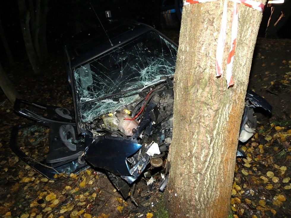 U Budíškovic narazilo auto do stromu. Ve voze zůstaly zaklíněné dvě osoby.