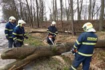 Dobrovolní hasiči z Lomnice nad Lužnicí opakovaně vyjížděli odstraňovat padlé stromy na silnici ve směru na Záblatí.