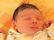 Natálie Prokešová se narodila 12. února Pavlíně Tůmové a Jakubu Prokešovi z Jindřichova Hradce. Měřila 50 centimetrů a vážila 4060 gramů.