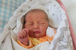 Ella Tejčková se narodila 19. září Veronice a Lukáši Tejčkovým z Jindřichova Hradce. Měřila 49 centimetrů a vážila 3380 gramů.