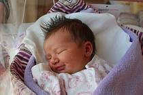 TEA CIKÁNOVÁ. Narodila se 8. června Lucii a Lukáši Cikánovým z Nové Bystřice. Vážila 3540 gramů.