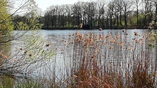 Rybník Potěšil mezi obcí Klec a obcí Lužnice.