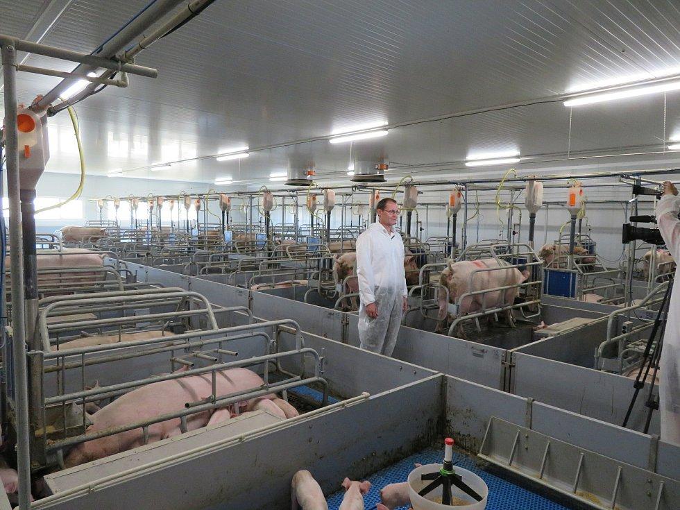 Postavit zemědělskou farmu není lehké. I další problémy řeší majitel zemědělské společnosti Rhea Holding Dešná Josef Kolář.