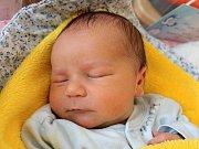 Matyáš Pešek se narodil 30. června Andree Majerové a Tomáši Peškovi z Jindřichova Hradce. Měřil 51 centimetrů a vážil 3560 gramů.