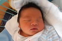 Gia Huy Le z Českých Velenic se narodil v českobudějovické porodnici 1. září 2013. Vážil 3530 gramů.