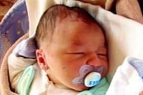 Stanislav Dědina se narodil 1. března 2014 ve 4 hodiny a 15 minut Vendule a Martinovi Dědinovým z Českých Velenic. Vážil 4300 gramů a měřil 53 centimetrů.