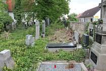 SPÍŠ DŽUNGLI  připomínala některá zákoutí na hřbitově svatého Václava v Jindřichově Hradci. Město se stalo vlastníkem a začalo prostor čistit. Lidé se však obávají o osud některých rozlámaných a neudržovaných náhrobků.