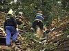 Dobrovolný hasič při zásahu zkolaboval