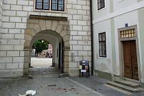 Labuť narazila do střechy třeboňského zámku a nepřežila.