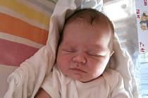 Ella Ševčíková z Pleší se narodila 22. července 2013 v brněnské porodnici Daniele Nenadálové a Liboru Ševčíkovi. Vážila 3730 gramů a měřila 51 centimetrů.