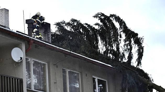 V Popelíně spadl na bytovku obří smrk.